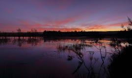 Sundown colours at Duralia lakes Penrith Royalty Free Stock Image