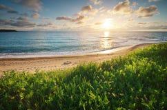 Sundown composition. Sundown seascape composition. Sky, sea, and green grass. Relax on the sea Stock Image