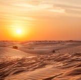 Sundown in desert. Royalty Free Stock Photos