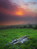 Sundown fog. Sundown sun closes the dense fog. Natural composition Stock Photos