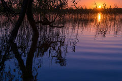 Sundown lake Stock Images