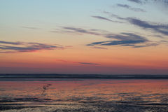 Sundown over mudflat Stock Image