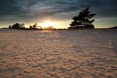 Sundown over sand dunes Stock Images