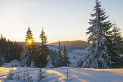 Sundown in winter Royalty Free Stock Image