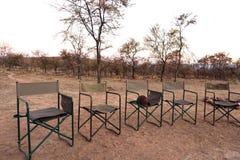 Sundowner del safari Imágenes de archivo libres de regalías