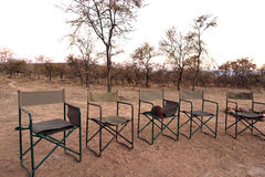 Sundowner di safari Immagini Stock Libere da Diritti