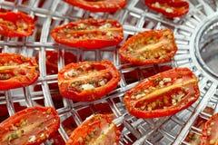 Sundried cherry tomatoes. On food dehydrator tray, shallow dof Stock Image