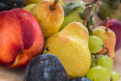 Sundry fresh bio grapes, plums, pears  and nectarine  on the woo Royalty Free Stock Photos