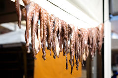 Sundry octopus. In front of a traditional greek tavern Stock Photography
