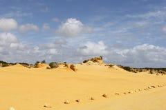 在石峰的黄沙sunes离开, Nambung国家公园,西澳州 免版税库存图片