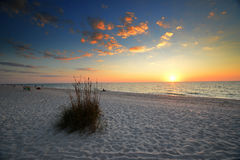 Sunest Beach Gulf. Sunset on the Gulf Of Mexico beach golden ball with a few clouds over the ocean with sea grass in foreground Stock Photography