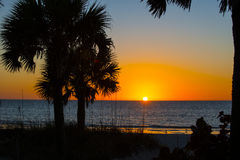 Sunest Indian Rocks Beach. Sunset on the Gulf Of Mexico beach golden ball with a few clouds over the ocean. sea grass and palm trees in foreground. Blue ocean Stock Image