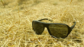 Sunglasses on grass Stock Image