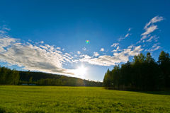 Sunfield Royalty Free Stock Photos