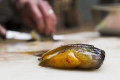 Sunfish для ужина стоковое фото rf