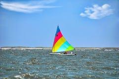 Sunfish di navigazione fotografie stock libere da diritti
