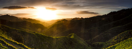 Sunflared dal Royaltyfri Fotografi