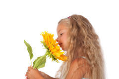 Sunflower. A beautiful little girl smells on a  sunflower Royalty Free Stock Image