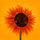 Sunflower. Illustration. EPS 10. Transparency used for some elements Royalty Free Stock Photography