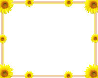 Sunflower. Border Royalty Free Stock Photo