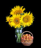 Sunflower and apricot in basket Royalty Free Stock Photo