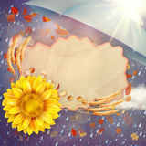 Sunflower with autumn leaves. EPS 10 Royalty Free Stock Photos