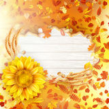 Sunflower with autumn leaves. EPS 10 Stock Photo