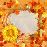 Sunflower with autumn leaves. EPS 10 Stock Photography