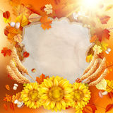 Sunflower with autumn leaves. EPS 10 Royalty Free Stock Photo