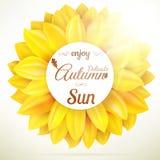 Sunflower autumn sale. EPS 10 Royalty Free Stock Photos