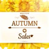 Sunflower autumn sale. EPS 10 Stock Images