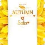 Sunflower autumn sale. EPS 10 Royalty Free Stock Photography