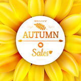 Sunflower autumn sale. EPS 10 Stock Image