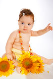 Sunflower baby Stock Photos