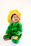 Sunflower baby. A six months old baby dressed as a sunflower for halloween Royalty Free Stock Photos