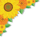 Sunflower background. Vector background with sunflowers and leaves Stock Photos