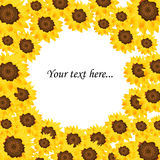 Sunflower background. Illustration of a sunflower background with space for your text.EPS file available Royalty Free Stock Image