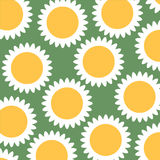 Sunflower background. Green and orange sunflower background Royalty Free Stock Photography