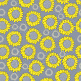 Sunflower - background. Sunflower on gray background, pattern Royalty Free Stock Photos