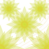 Sunflower background. Vector sun flower design abstract Royalty Free Stock Images