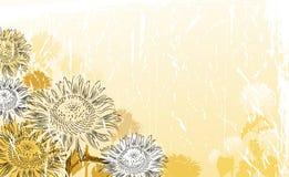 Free Sunflower Background Royalty Free Stock Image - 33041066