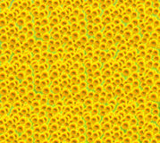 Sunflower background. Background shot made of beautiful sunflowers stock photography