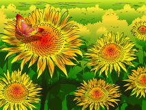 Sunflower background with butterfly Stock Images