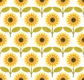 Sunflower background pattern vector Royalty Free Stock Images