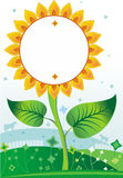 Sunflower background1 Stock Images
