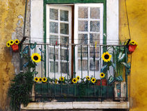 Sunflower balcony Stock Images