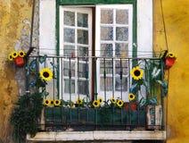 Sunflower balcony stock images