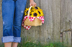 Sunflower basket and blue jeans Royalty Free Stock Images