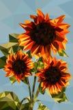 Sunflower. Beautiful orange sunflower polygon style Royalty Free Stock Photos