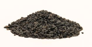 Sunflower bird seed. In cone shape pile Stock Image